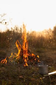 Lage hoek vuur met vlammen in de natuur