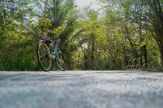 Lage hoekmening van een fietsparkeren op een lege weg die door weelderig groen gebladerte in tropisch bos in de zomer wordt omringd.
