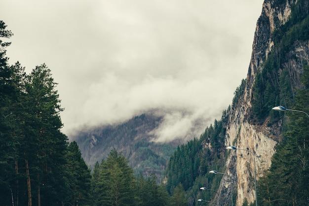 Lage wolken drijven tussen bergen.