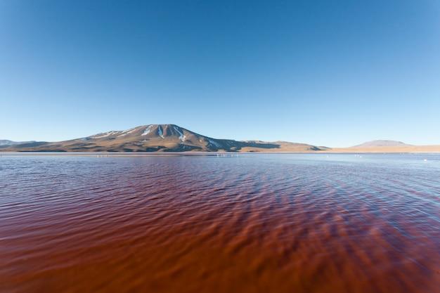 Laguna colorada-mening, bolivië