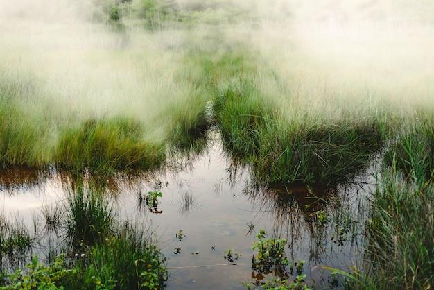 Lagune met stilstaand water en mist na een regenachtige dag.