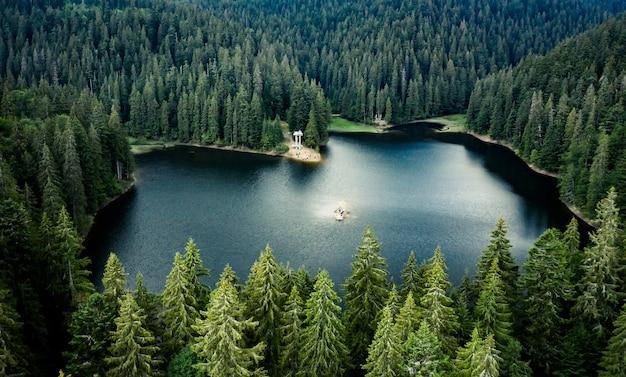 Lake synevir omlijst door dennenbos in de karpaten, uitzicht vanaf drone