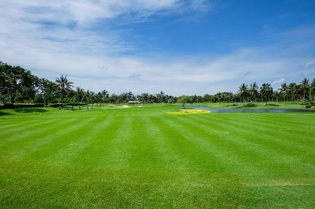 Land scape brede groene grasvelden en een blauwe lucht, golfbanen.