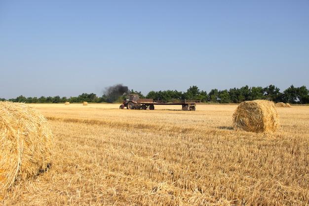 Landbouw - de tractor draagt een hooiberg. trekker met hooi.