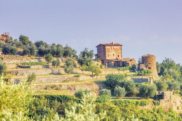 Landbouw in de buurt van montalcino