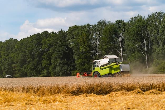 Landbouw machine oogst in velden