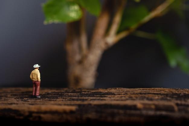 Landbouw of ecologie concept. miniatuur senior famer die de reuzeboom bekijkt