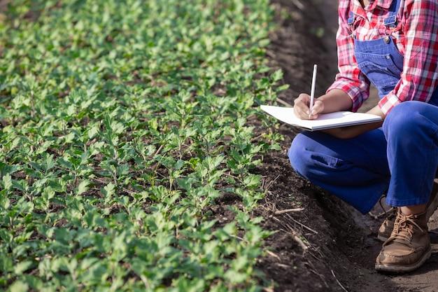 Landbouw onderzoekt bloemvariëteiten, moderne landbouwconcepten.