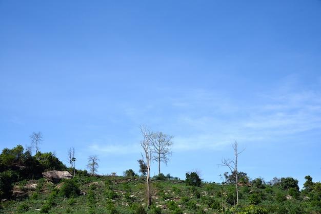 Landbouw op berg in thailand