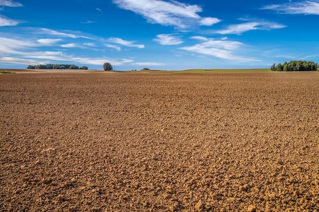 Landbouwachtergrond van korenveld na oogst en blauwe hemel.