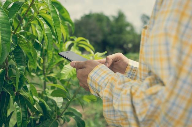 Landbouwer die de kwaliteit van bomen in de tuin controleert