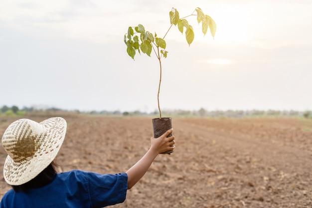 Landbouwer die kleine boom in leeg land voor het planten houdt
