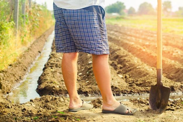 Landbouwer die landbouwgewassen, platteland, irrigatie, natuurlijke water geven water geeft. landbouw.