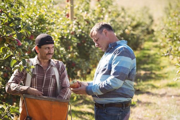 Landbouwer die met medewerker in appelboomgaard interactie aangaat
