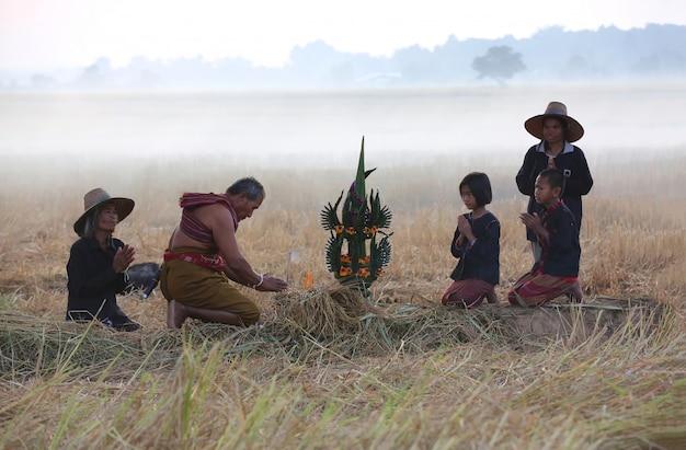 Landbouwer die oogstceremonie in mistig padieveld doet