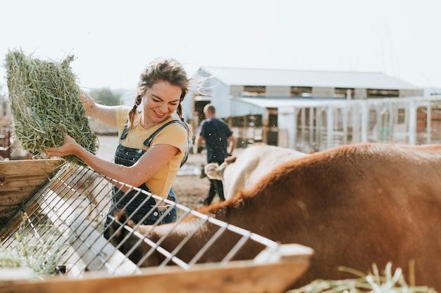 Landbouwer die voor dieren zorgt
