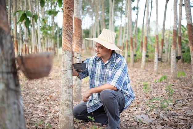 Landbouwer landbouwer rubberboomaanplanting