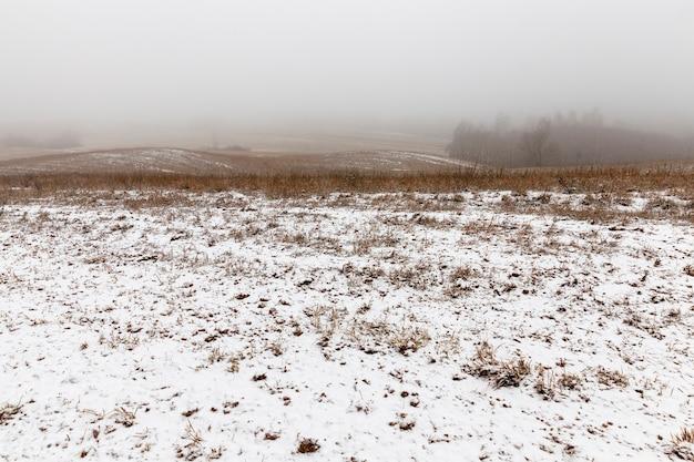Landbouwgebied in de winter is bedekt met sneeuw