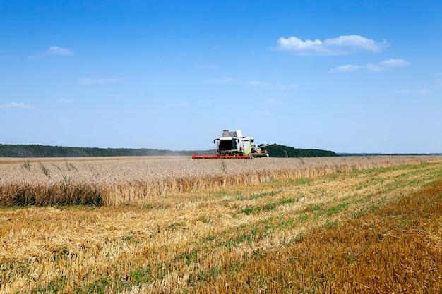 Landbouwgebied waarop maaimachine werkt