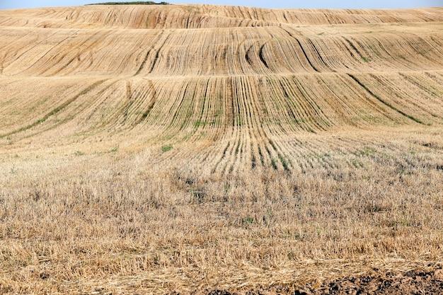 Landbouwgrond, die gaat koken en over andere opties, dwz zelf schade berokkenen