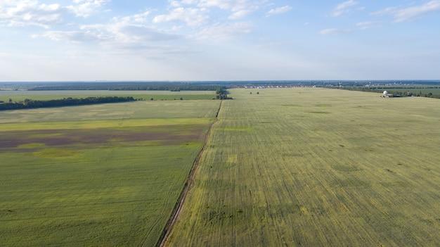 Landbouwgrond van bovenaf - luchtfoto van een weelderig groen geplaatst