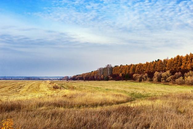 Landbouwgronden na de oogst. herfst landschap. heldere kleuren van de herfst.