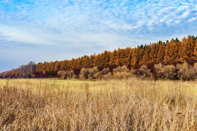 Landbouwgronden na de oogst. herfst landschap