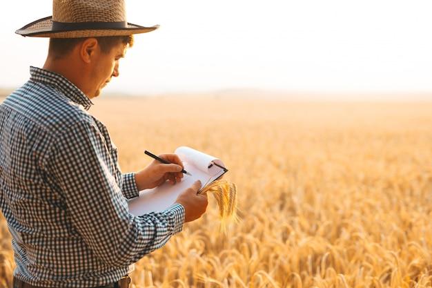 Landbouwkundige inspecteur die de tarweplantage onderzoekt en aantekeningen maakt in documenten.