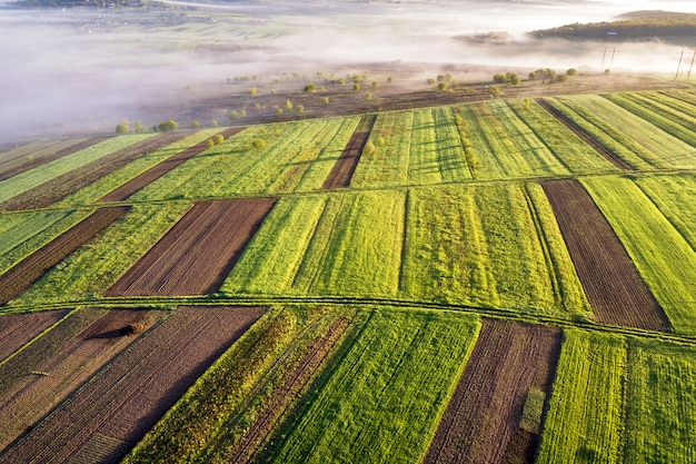 Landbouwlandschap van lucht op zonnige de lentedageraad. groene en bruine velden, ochtendmist.