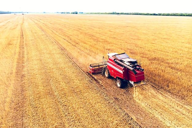 Landbouwmachine die gewassen oogst in velden. oogsten in de herfst in de ochtend bij zonsopgang. agribusiness in de altai regio rusland.