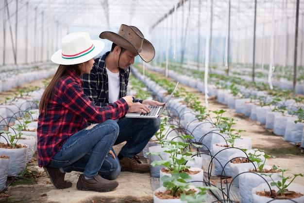 Landbouwonderzoeker met de tablet inspecteert langzaam planten.