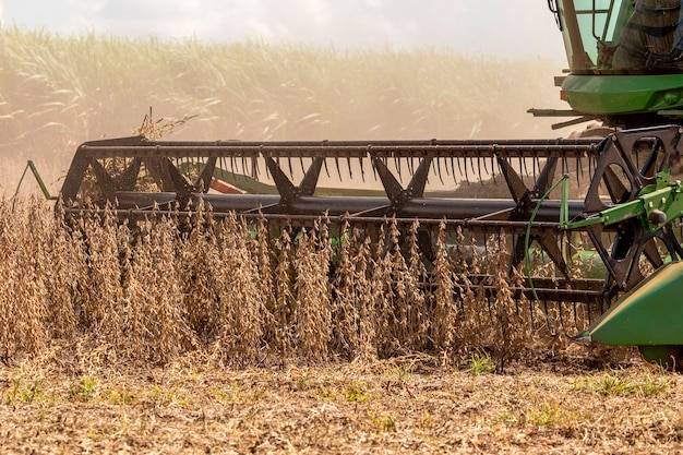Landbouwtrekker die sojabonen oogst in het veld - pederneiras-sao paulo-brasil - 20-03-2021.