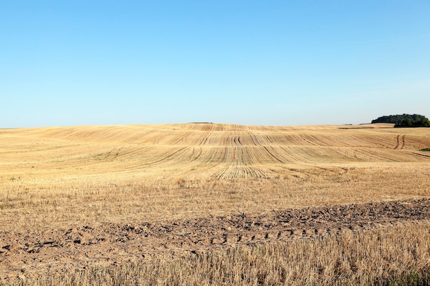 Landbouwveld, dat naar andere opties gaat,