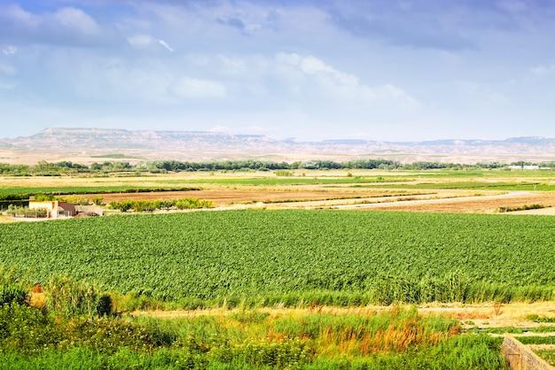 Landelijk landschap in aragon, spanje