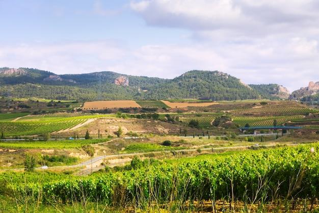 Landelijk landschap in la rioja