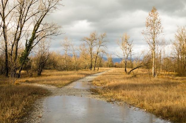 Landelijk landschap, onverharde weg door plattelandspanorama Premium Foto