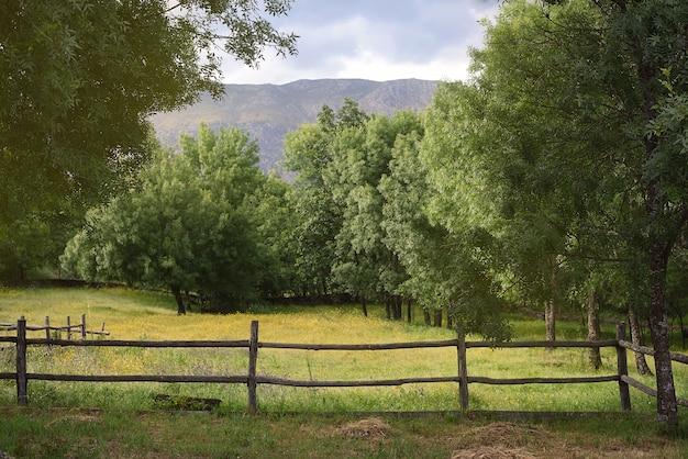 Landelijk landschap van boerderij in de natuur in het voorjaar met houten hek