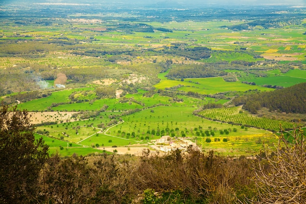 Landelijk landschap van puig de randa