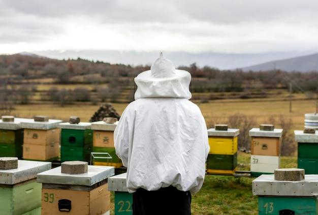 Landelijk levensstijlconcept met bijenkorven