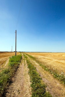 Landelijk onverharde weg die tussen landbouwvelden loopt, die worden geoogst. elektrische paal.