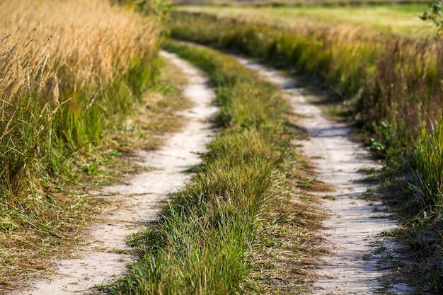Landelijke landschapsscène met landweg tussen groene grasgebieden.