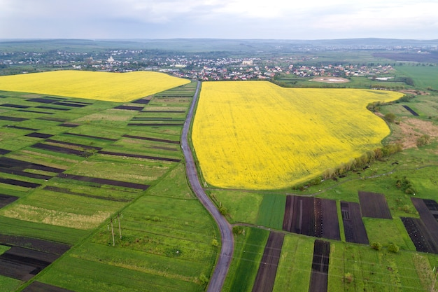 Landelijke omgeving op lente of zomerdag. luchtfoto van groene, geploegde en bloeiende velden, huis daken en een weg op zonnige dageraad. luchtfotografie.