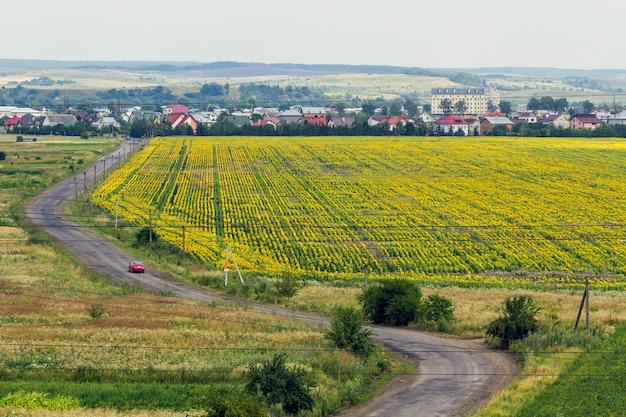 Landelijke plattelandsweg tussen gele zonnebloemvelden en een klein dorp met huizen