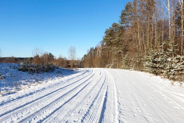 Landelijke weg bedekt met sneeuw tijdens de winter. bomen langs de weg. op sneeuw zichtbare vingerafdrukken van autobanden en slordige dieren in het wild. gefotografeerd close-up.