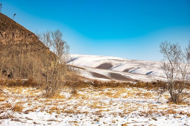 Landschap, bevroren rivieroever, bomen en gras in de sneeuw