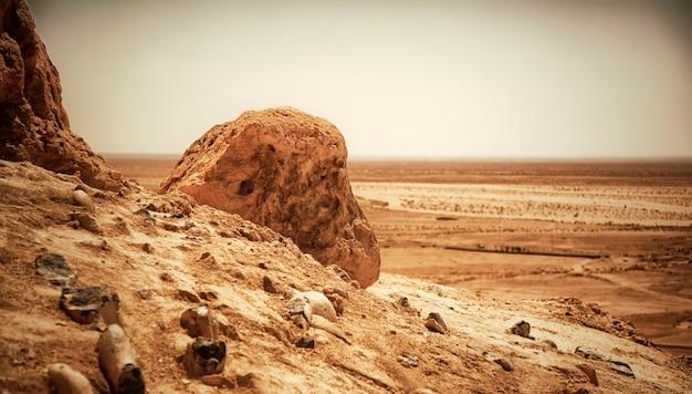 Landschap chebika oase in de saharawoestijn. uitzicht op het berglandschap. toneelmeningsbergoase in noord-afrika. gelegen aan de voet van jebel el negueba. atlasgebergte op zonnige middag. tozeur, tunesië