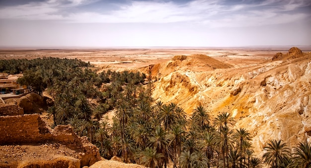 Landschap chebika oase in sahara woestijn, ruïnes nederzetting en palm