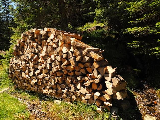 Landschap dat van opgestapelde hakbossen met groene bomen is ontsproten