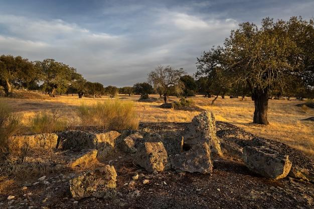 Landschap in de dehesa de la luz extremadura spanje