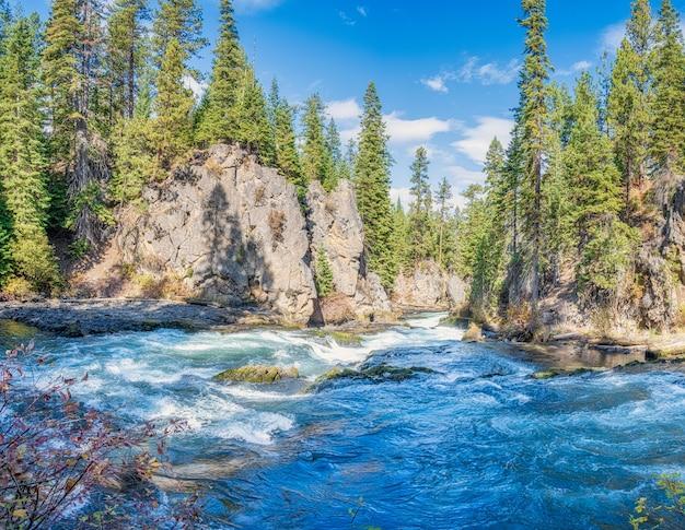 Landschap in de rivier